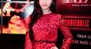 Hoa hậu Phương Nga bị bắt khẩn cấp vì nghi lừa đảo hơn 16 tỉ đồng