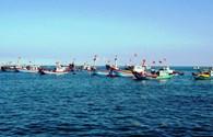 Lệnh cấm đánh bắt cá phi lý của Trung Quốc: Ngư dân vẫn tiếp tục vươn khơi