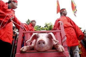"""Kiên quyết """"xóa"""" tục chém lợn ở làng Ném Thượng"""