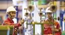 PV Power sẽ hoàn thành cổ phần hóa trong năm nay