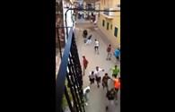Video: Sốc cảnh bò tót lao ra đường húc chết người
