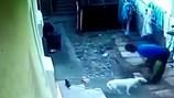 Trèo tường vào nhà, tên trộm bị chó cắn... tụt cả quần