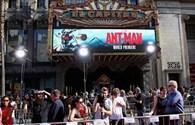 """Bom tấn """"Ant Man- Người kiến"""" ra mắt hoành tráng"""
