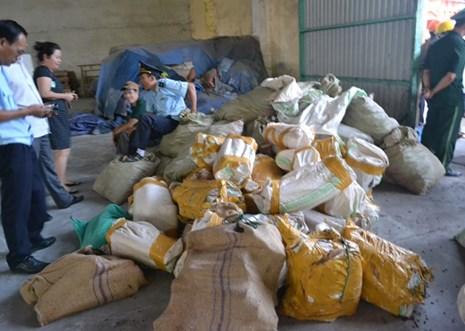 Đà Nẵng: Lượng ngà voi và vảy tê nhập lậu vừa phát hiện là hơn 5 tấn