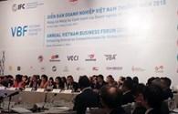 Diễn đàn doanh nghiệp Việt Nam: Kết nối doanh nghiệp FDI và tư nhân