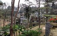 Từ Nhà thờ tổ của Hoài Linh đến biệt thự VIP ở Ba Vì