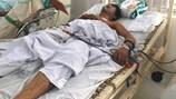 Quảng Nam: Ăn bọ rầy, 1 người tử vong, 2 người nguy kịch