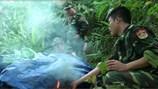 Khai thác vàng trái phép tại Quảng Trị: Bộ Chỉ huy Biên phòng tỉnh đang kiểm tra tình trạng bảo kê