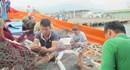 Đà Nẵng: Người dân e dè trước thông tin cá chết hàng loạt