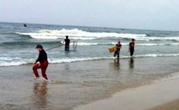 Quảng Bình: Phát hiện xe đông lạnh thu mua cá trôi dạt vào bờ để bán lại