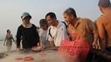 Đà Nẵng mở hàng loạt điểm bán cá sạch từ ngày mai (2.5)