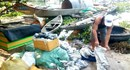 Thừa Thiên - Huế: Cá nuôi lồng chết hàng loạt