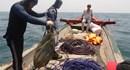 Bộ Tài nguyên Môi trường khảo sát vùng biển nghi cá chết nhiều tại Quảng Bình