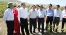 Đà Nẵng: Nghe cử tri phản ánh tình trạng ô nhiễm, ông Đinh Thế Huynh đến ngay hiện trường kiểm tra