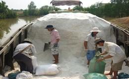 TPHCM: Mua hỗ trợ hơn 105.000 tấn muối cho nông dân Cần Giờ