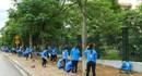 Đà Nẵng: Làm tình nguyện, cán bộ xã bị cây gạt ngã tử vong