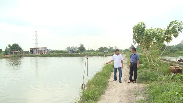 Vụ liên kết nuôi cá tra ở An Giang: Không thể chỉ nông dân gánh hậu quả