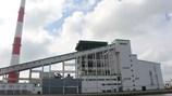 Nuôi cá ngay họng xả thải Nhà máy giấy Lee&Man: Sở NN&PTNT Hậu Giang đóng nhầm vai