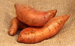Những thực phẩm hàng đầu giúp ngăn ngừa ung thư tuyến tụy
