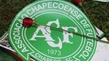 Chapecoense đã sẵn sàng cho hành trình tái sinh sau thảm họa kinh hoàng