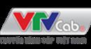 Truyền hình Cáp Việt Nam - Chi nhánh T.P Hồ Chí Minh thông báo tuyển dụng