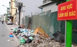Tại sao lại vứt rác dưới biển cấm?
