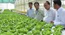 Mũi đột phá thu hút đầu tư phát triển nông nghiệp, nông thôn
