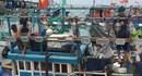 Công ty Rạng Đông tài trợ bóng đèn led chuyên dụng trị giá gần 400 triệu đồng cho ngư dân Lý Sơn