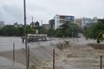 Quỹ Tấm lòng vàng kêu gọi ủng hộ người dân và học sinh vùng mưa lũ