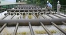 Hà Nội chuẩn bị có thêm 2 nhà máy nước hiện đại mới