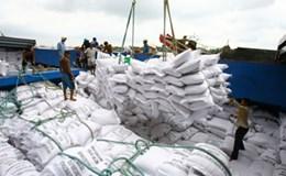 Xuất khẩu gạo của Việt Nam vẫn trên đà giảm mạnh