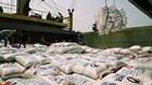 Bộ Công Thương xác minh việc xin giấy phép xuất khẩu gạo tốn 20.000 USD