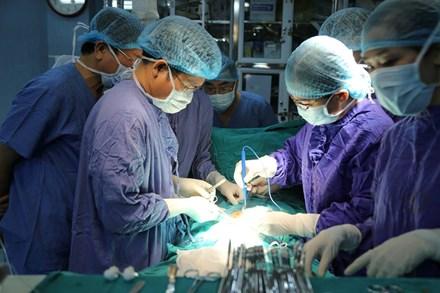 Kết quả hình ảnh cho Thành công trong ghép tạng người sư