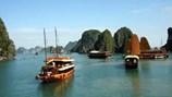 Phát triển đội tàu du lịch trên vịnh Hạ Long:  Không đóng mới tàu gỗ