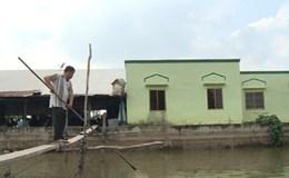 Hợp đồng tiêu thụ cá tra ở Đồng Bằng Sông Cửu Long: Trăm dâu đổ đầu... nông dân!