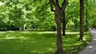 Món quà kỷ niệm hãy là một công viên