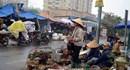 Gà Đông Tảo trầm lắng vì dịch bệnh