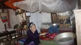 LD16115: Ước nguyện của cụ bà cô độc thờ liệt sĩ trong căn nhà dột nát