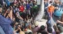 Ngư dân các tỉnh Nam Trung Bộ: Sung túc chuyến biển đầu năm
