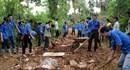Bão số 14: 1200 thanh niên tình nguyện Thủ đô sẵn sàng ứng phó với bão Haiyan