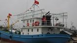 Quảng Trị: Tàu 67 vươn khơi, tháng cao điểm thu nhập hơn 1,2 tỉ đồng