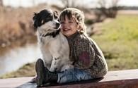 Ngỡ ngàng trước tình bạn đặc biệt của cậu bé hai tuổi và ba chú chó đáng yêu