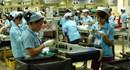 Tiền Giang: 11.982 người hưởng  trợ cấp thất nghiệp 6 tháng đầu năm