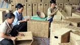 Đồng Tháp: Nhân rộng mô hình đảng viên hỗ trợ hộ nghèo xóa nghèo