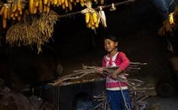 Hỗ trợ hộ nghèo tiếp cận các dịch vụ xã hội cơ bản