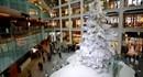 Chiêm ngưỡng những cây thông Noel đẹp nhất thế giới