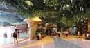 Thêm một cơ hội khuyến mãi hấp dẫn tại Vincom Mega Mall Royal City