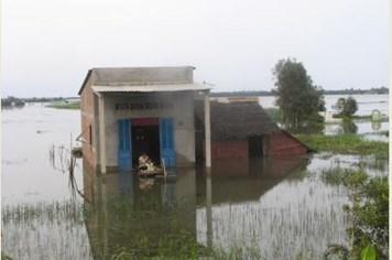 """Từng có một """"siêu bão Haiyan"""" đổ bộ vào Việt Nam làm chết hàng chục ngàn người"""