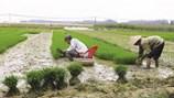 Người lao động bị thu hồi đất được hưởng chính sách hỗ trợ đào tạo nghề và giải quyết việc làm
