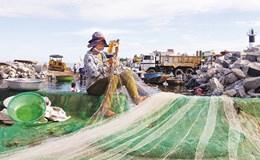 Biển là yếu tố trọng yếu trong phát triển kinh tế